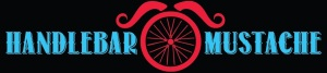 hbar-stache-logo-02
